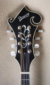 mandolin-f5-5230045