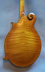 mandolin-f5-8279