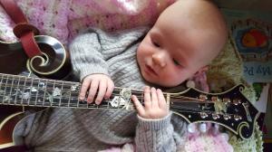 mandolin-f5-baby