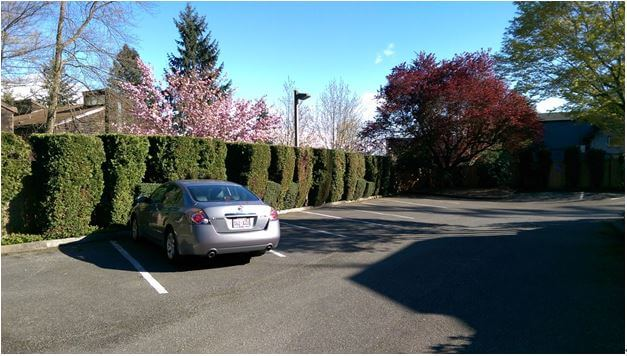 Ample parking spaces
