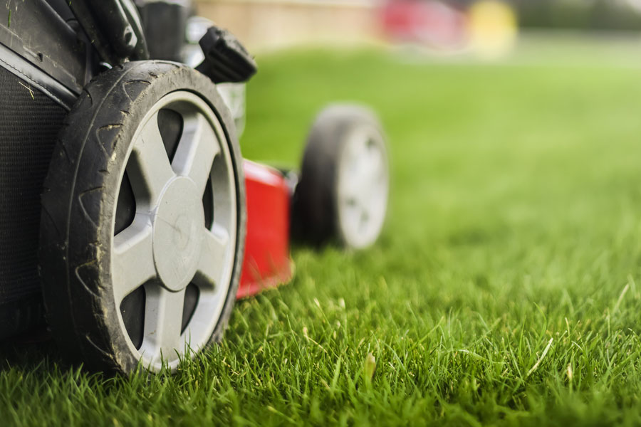 Residential Turf/Lawn Care