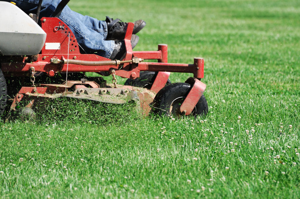 Lawn Care Mowing/Mulching