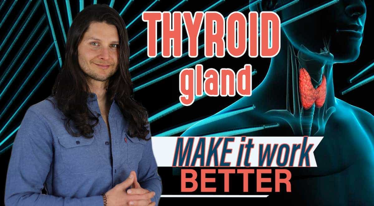 my thyroid vimirth