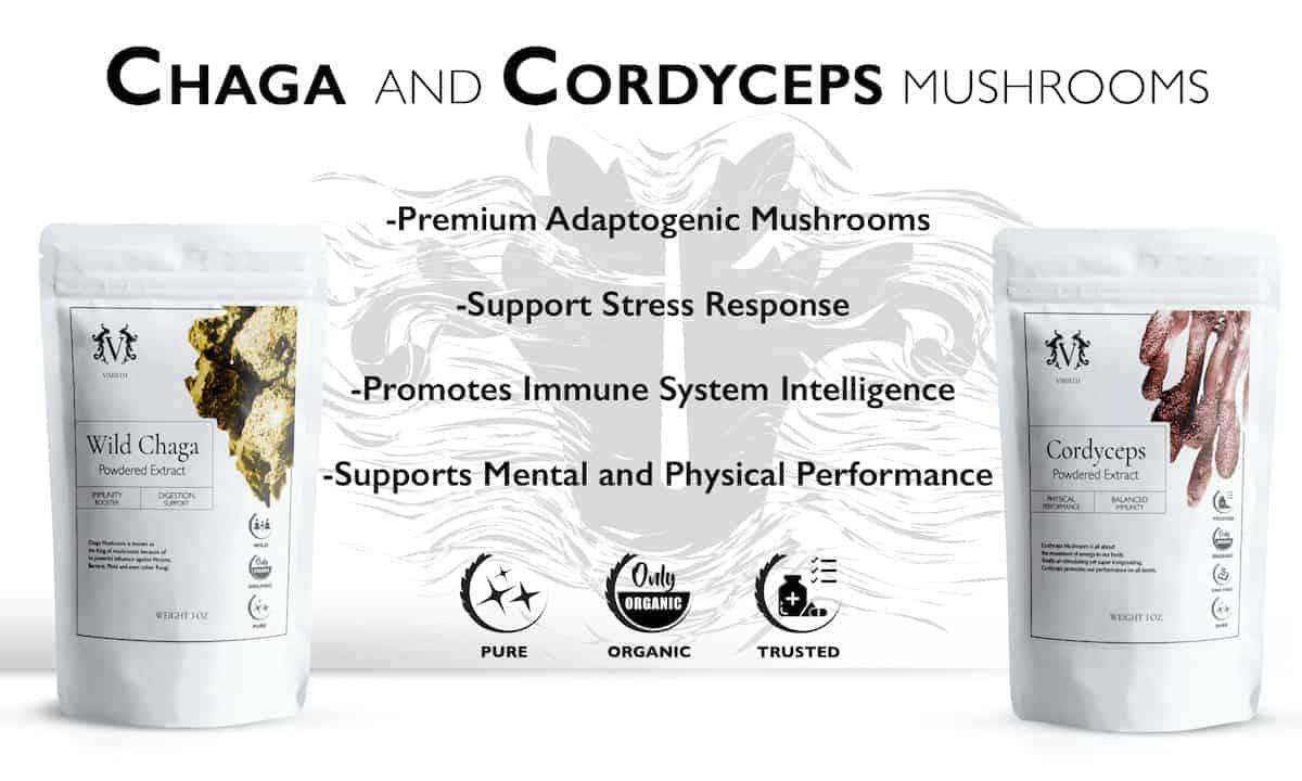 chaga cordyceps mushroom vimirth