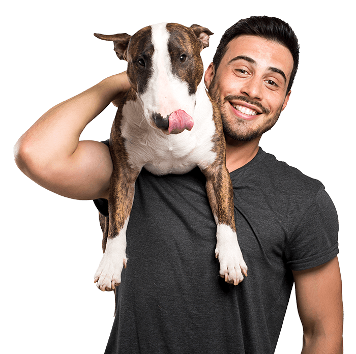 Economizer HVAC is Pet Friendly
