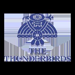 The Thunderbirds