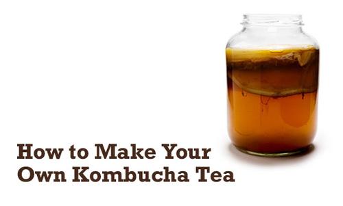 how-to-make-your-own-kombucha-tea