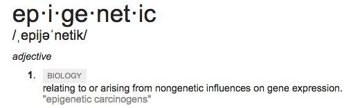 epigenetic chiropractic