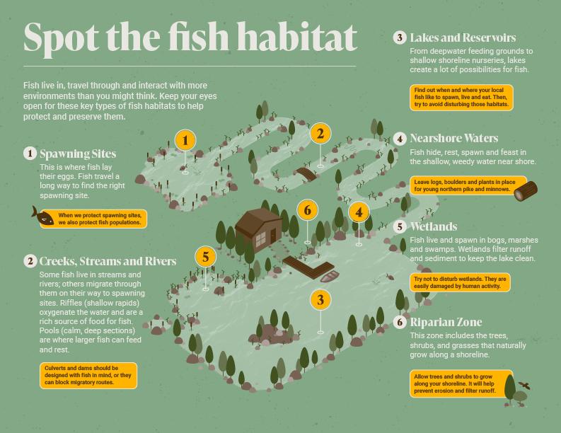 Finished Fisheries infographic displaying various fish habitats.