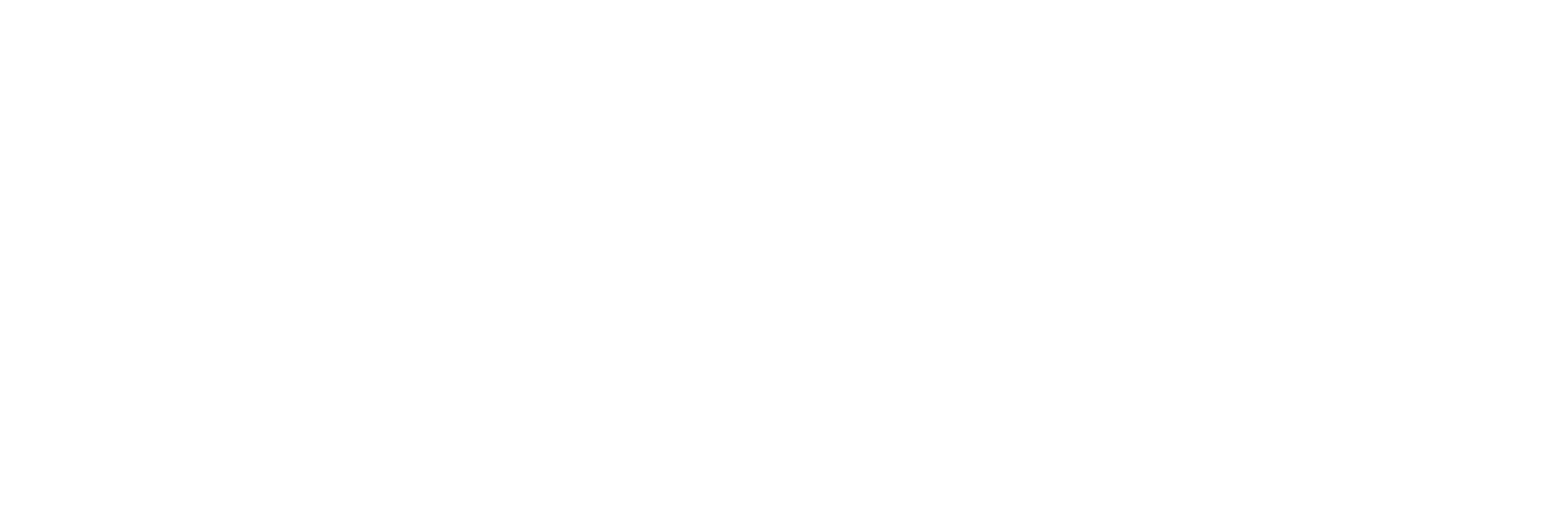 logo2_white2