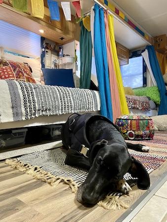 Gamble Family Adventures RV Travel Blog   Thelma Gallery Photo