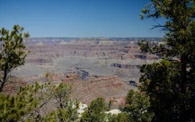 Day 174: Grand Canyon, AZ