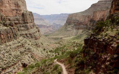 Day 176: Grand Canyon, AZ