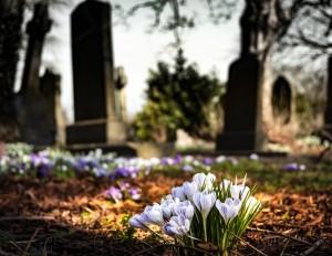 graveyard-1417871_1920 (1)