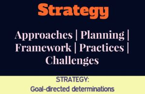 strategy planning, processes, approaches, challenges and limitations