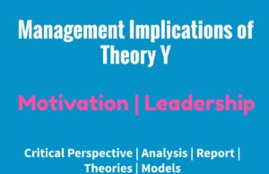 management implications of theory y