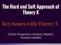 The Hard Approach and Soft Approach of Theory X