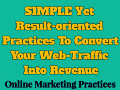SIMPLE Yet Result-oriented Practices To Convert Your Web-Traffic Into Revenue knowledge centre Knowledge Centre For Entrepreneurs SIMPLE Yet Result oriented Practices To Convert Your Web Traffic Into Revenue 238x178