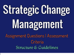 Strategic Change Management - Free assignment- sample assignment for MBA