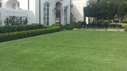 artificial grass lawns and landscaping