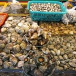 how-to-select-shellfish widget