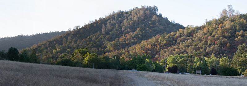 Photo of a meadow and tree-covered hills in Coarsegold, California