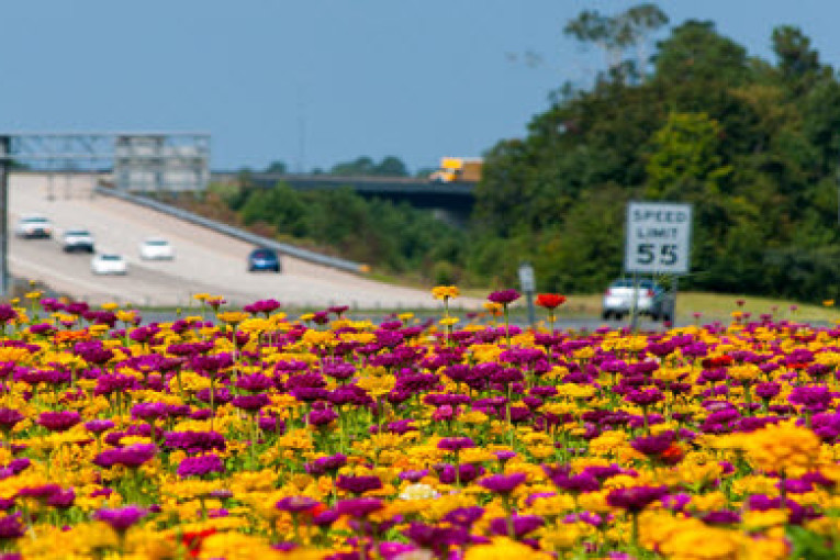 I-26 Connector Plans Move Ahead