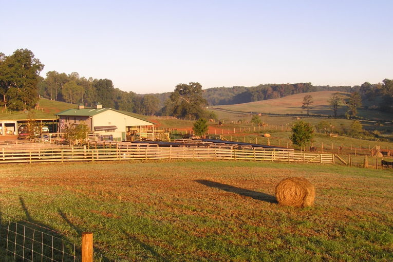 Land Trusts: Sustaining the Farms that Feed NC