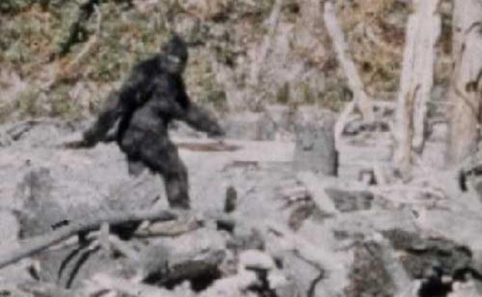 Rob Lowe Saw Bigfoot . . . And He Was Afraid It Would Kill Him