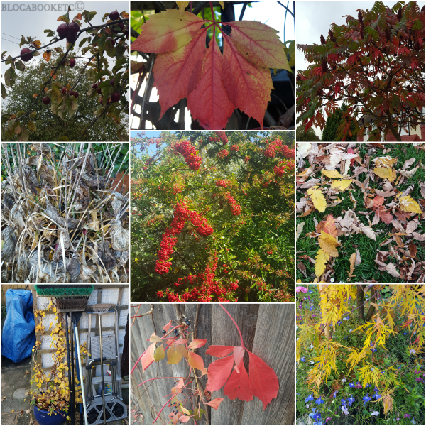 Seasons, Autumn, Blog A Book Etc, Fay