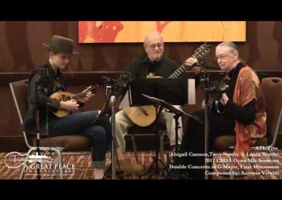 2017 Open Mic – Double Concerto in G Major