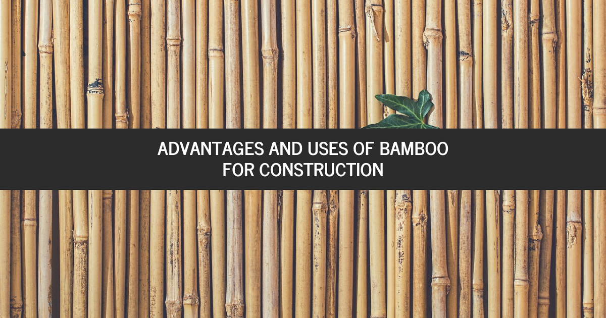 bamboo for construction