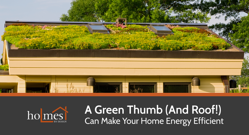 A Roof Top Garden Can Drastically Reduce Your Energy Bills