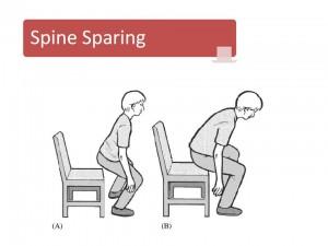 spine sparing squat
