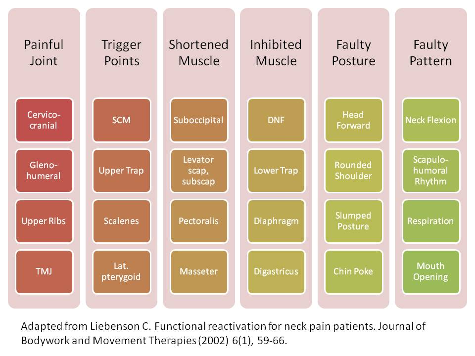 Patterns of neck pain syndromes