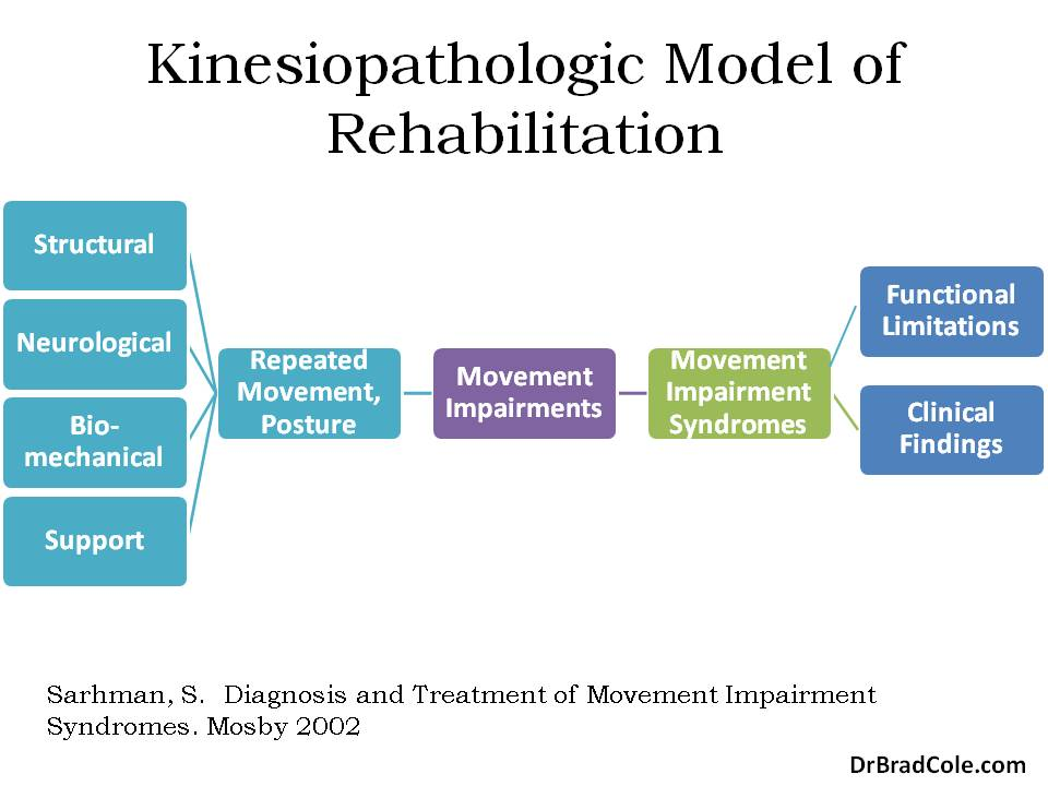 kinesiopathologic model