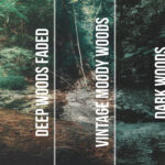Rustic Woods LUT Pack