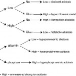 Flowchart summary of strong ion approach