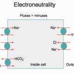 Electroneutrality