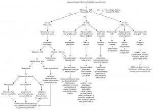 Effusion algorithm