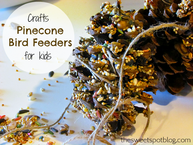 Pinecone-Bird-Feeders