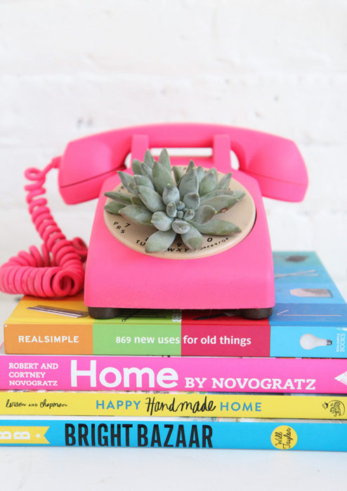 DIY Rotary Phone Succulent Planter
