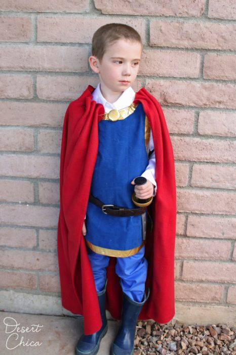 Easy Snow White Prince Costume