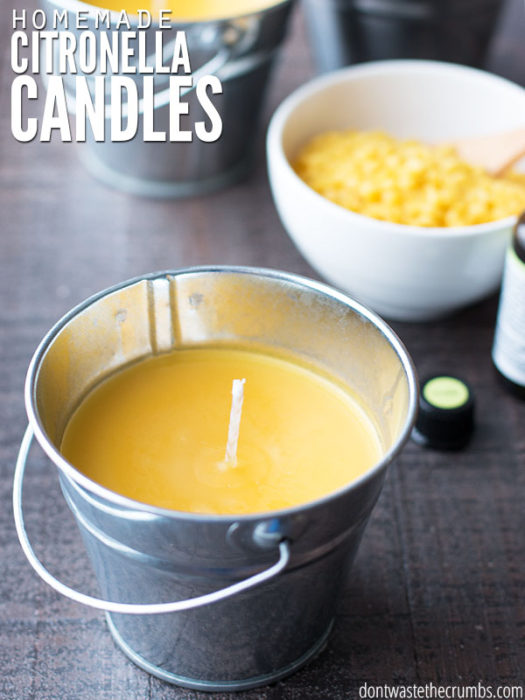 Homemade Citronella Candles