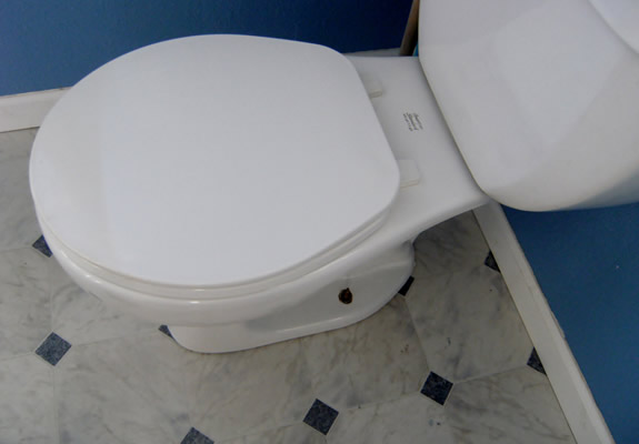 Toilet Replacement Services in The Woodlands TX
