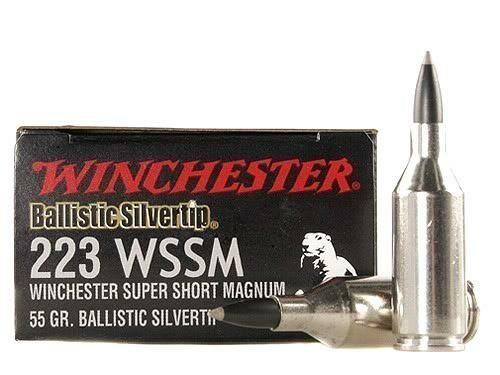 Winchester Supreme Ballistic Silvertip .223 WSSM (20)