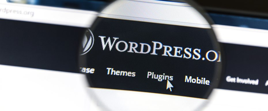 extendwordpress-hero