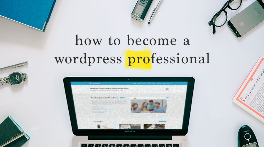 guide-to-become-wordpress-professional-1
