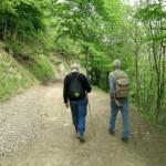 Wandelen & trekking
