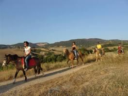 agriturismo met paarden